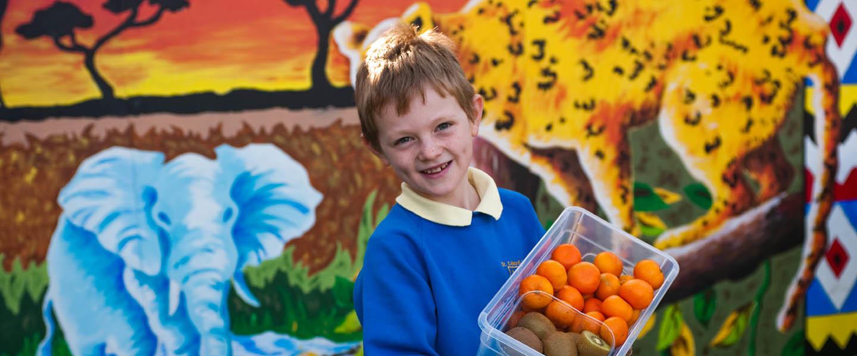 Healthy Living - Eco Schools